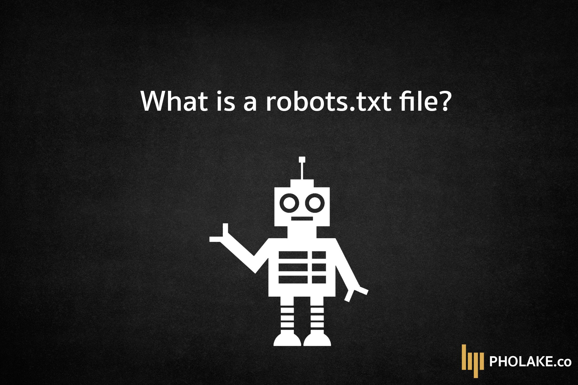 What is a robots.txt file